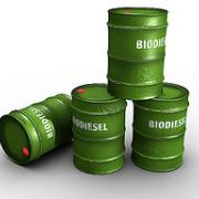barrels of biodiesel