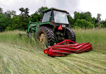 Terminating a cover crop in spring using a roller-crimper.