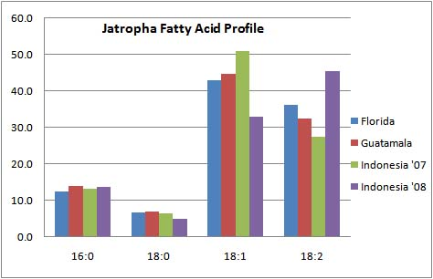 Fatty acid profile of Jatropha oil