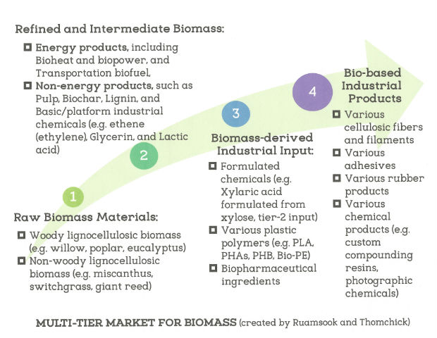 Multi-tier biomass markets