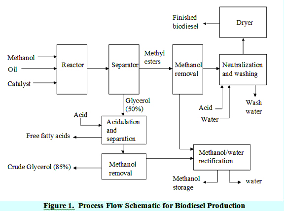 Process Flow Schematic for Biodiesel Production