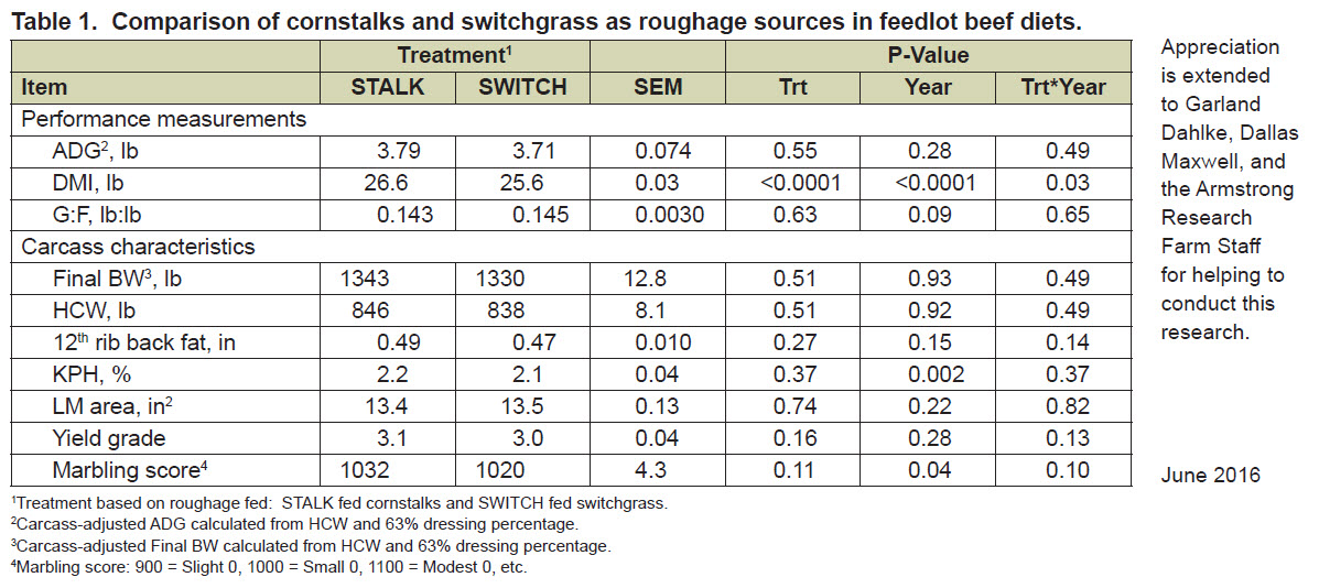 Comparison of cornstalks and switchgrass as roughage sources in feedlot beef diets