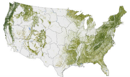 NASA Earth Observatory: Where The Trees Are. Photo: