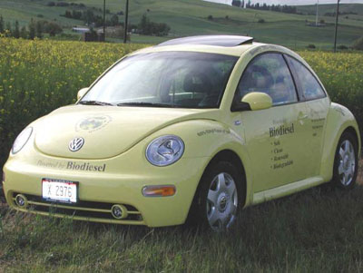 University of Idaho yellow Volkswagen bug fueled on mustard oil biodiesel